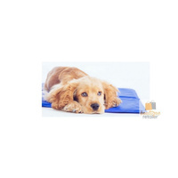 2x PET COOLING MAT Pad Cool Non-Toxic Dog Cat Bed Water Gel Summer Sleep New