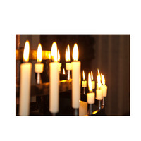 8x CHURCH CANDLES Pillar Stick Wedding Table Candleabra White Wax Bulk Pack New