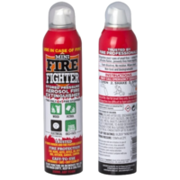 2x Mini Fire Extinguisher Fighter 250ml All Purpose Wood Oil Electrical Petrol